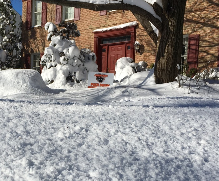 Snow Phantoms